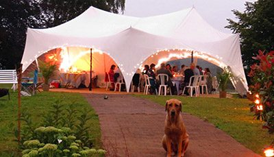 Party-Marquee-Dog